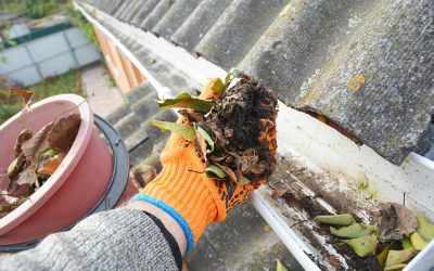 How to Clean Your Gutters in 4 Steps
